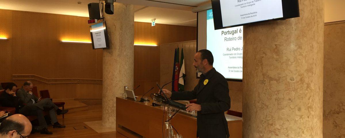 Professor Rui Pedro Julião na AR